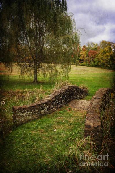 Photograph - Autumn In Bayne Park by Debra Fedchin