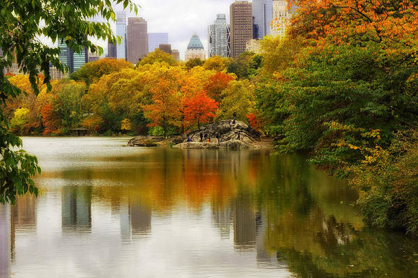 Photograph - Autumn In Central Park by Jessica Jenney