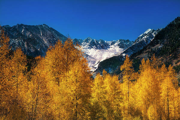 Wall Art - Photograph - Autumn In Colorado by Andrew Soundarajan