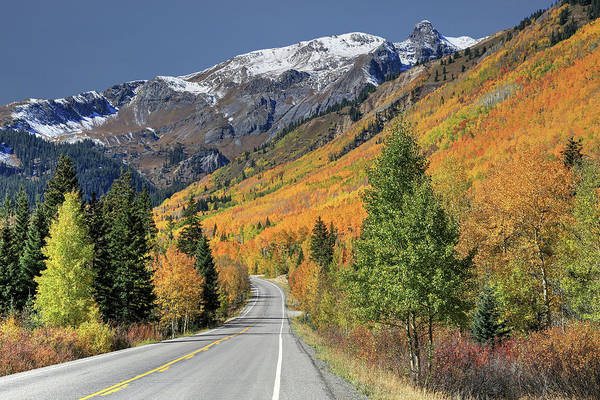Wall Art - Photograph - Autumn In Colorado by Donna Kennedy