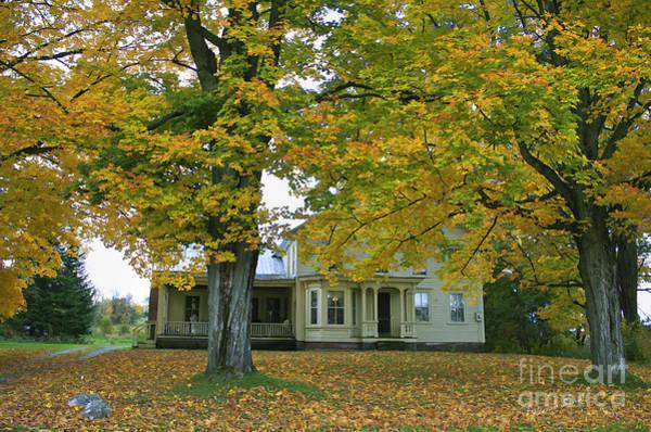 Photograph - Autumn In Franklin by Deborah Benoit