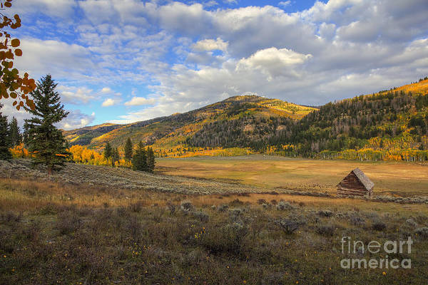 Photograph - Autumn In Joe's Valley by Spencer Baugh