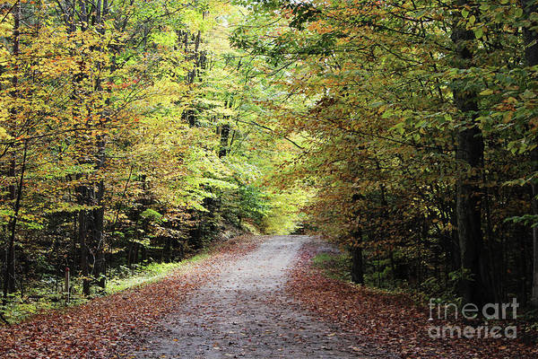 Photograph - Autumn In Michigan by Laura Kinker