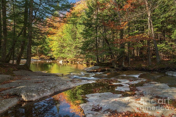 Autumn In New Hampshire Art Print