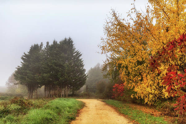Photograph - Autumn In Sauveterre by Georgia Fowler