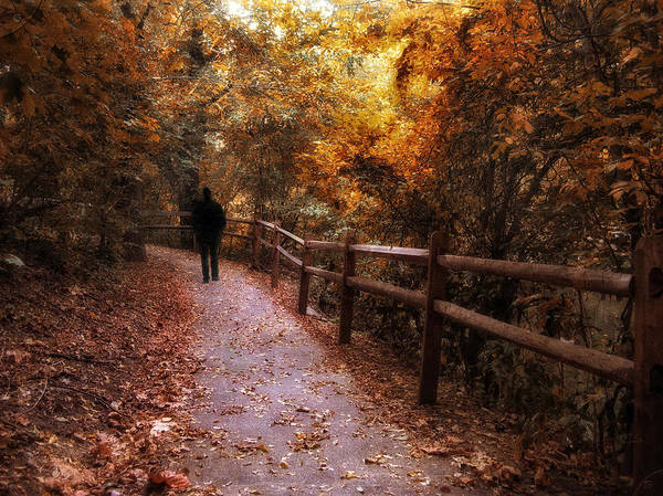 Bronze Leaf Wall Art - Photograph - Autumn In Stride by Jessica Jenney