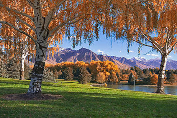 Wall Art - Photograph - Autumn In Sugarhouse Park by Douglas Pulsipher