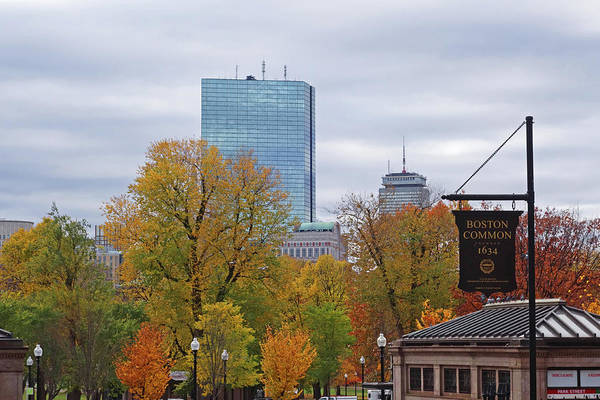 Photograph - Autumn In The Boston Common Boston Ma by Toby McGuire