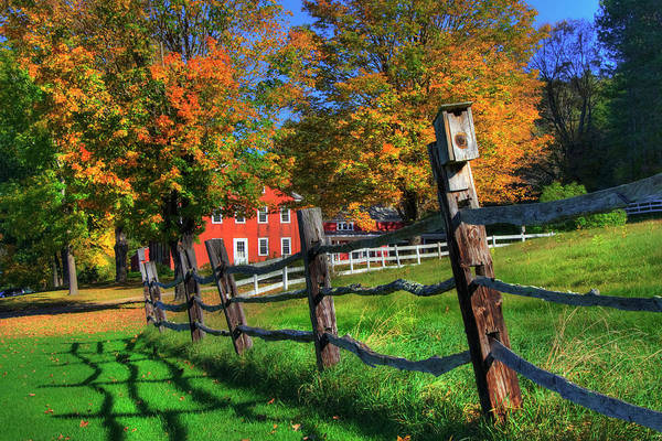 Photograph - Autumn In The Country by Joann Vitali