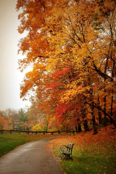 Photograph - Autumn In The Park by Jessica Jenney