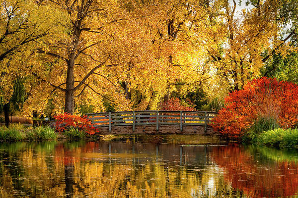 Photograph - Autumn In The Park by Teri Virbickis