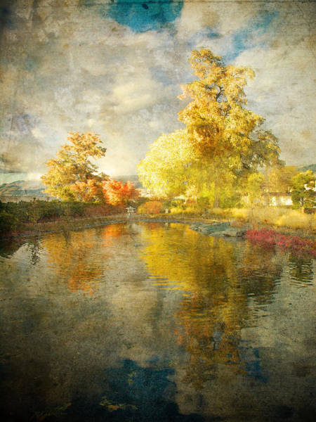 Photograph - Autumn In The Pond by Tara Turner
