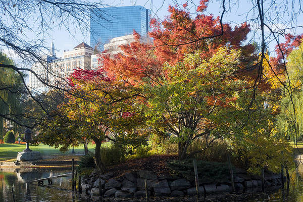 Photograph - Autumn In The Public Garden Boston Ma by Toby McGuire