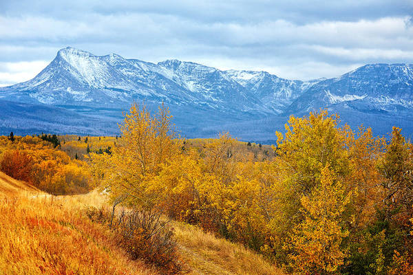 Photograph - Autumn In The Rockies by Mary Jo Allen