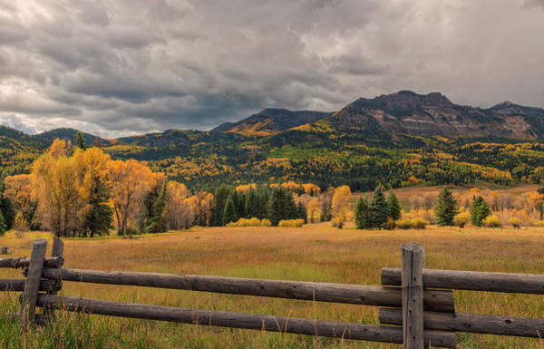 Photograph - Autumn In The San Juan River Valley by Loree Johnson