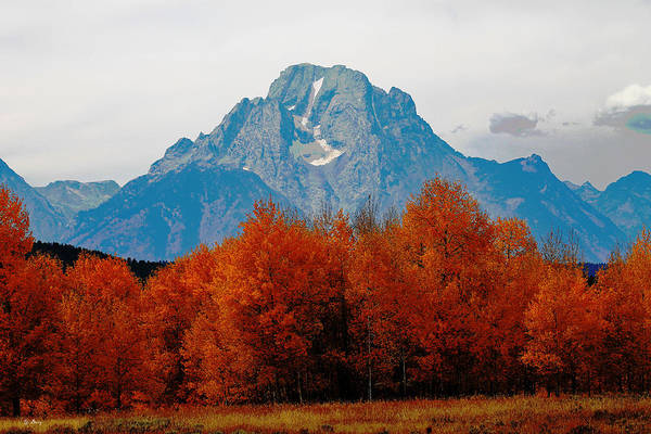 Fall Scenery Mixed Media - Autumn In The Tetons 002 by G Berry