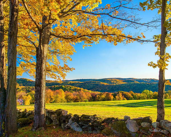 Photograph - Autumn In Vermont by Tim Kathka