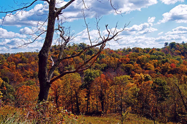 Photograph - Autumn In West Virginia by Mike Murdock