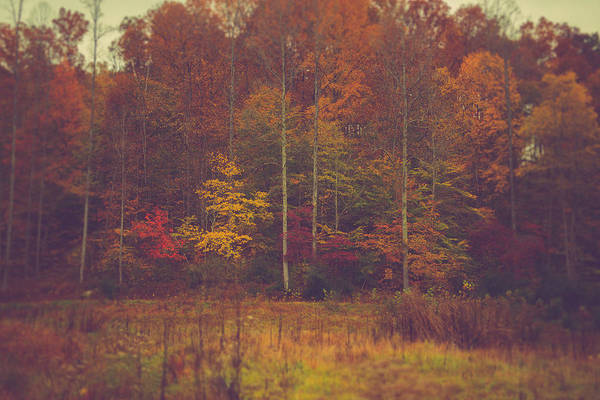 West Virginia Photograph - Autumn In West Virginia by Shane Holsclaw
