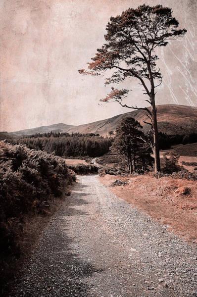 Photograph - Autumn Journey In Wicklow Hills. Ireland by Jenny Rainbow