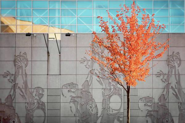 Photograph - Autumn Kohl Center by Todd Klassy
