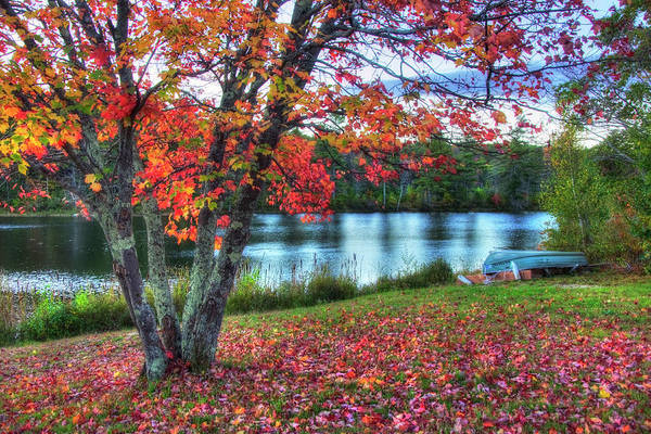 Photograph - Autumn Lake - Harrisville Nh by Joann Vitali