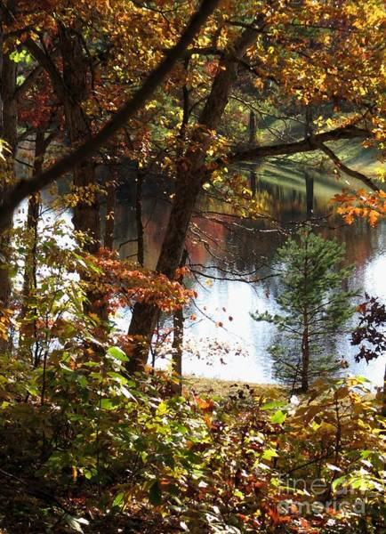 Digital Art - Autumn Lake With Oil Painting Effect by William Kuta