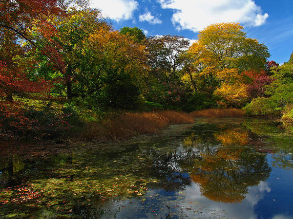 Photograph - Autumn Landscape by Juergen Roth