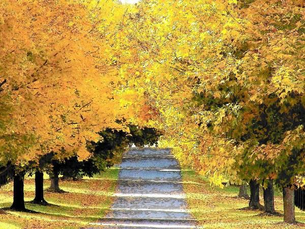 Wall Art - Photograph - Autumn Lane by Joyce Kimble Smith