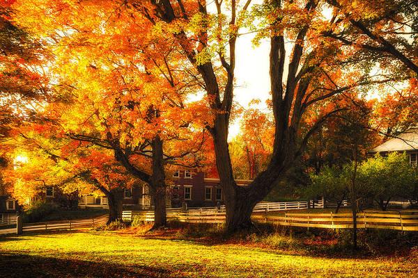 Photograph - Autumn Lane by Robert Clifford