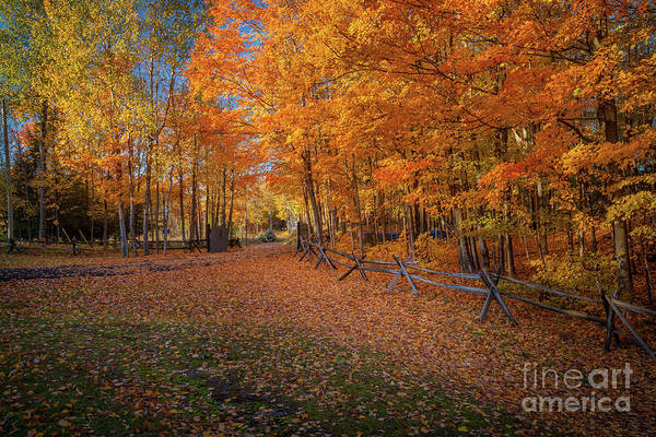 Photograph - Autumn Lane by Roger Monahan