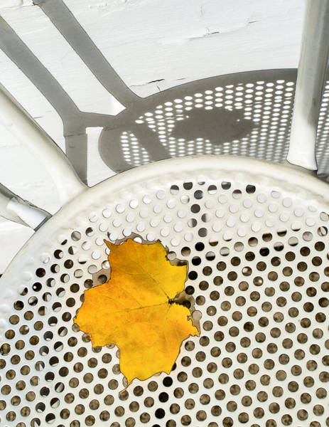 Photograph - Autumn Leaf And Shadows by Gary Slawsky