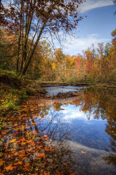 Nantahala Photograph - Autumn Leaves by Debra and Dave Vanderlaan