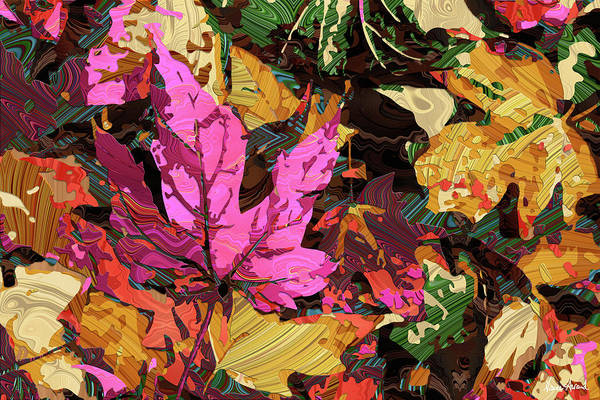 Photograph - Autumn Leaves by Nancy Aurand-Humpf