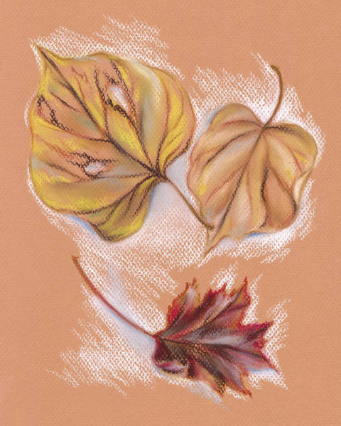 Pastel - Autumn Leaves Of The Redbud And Maple by MM Anderson