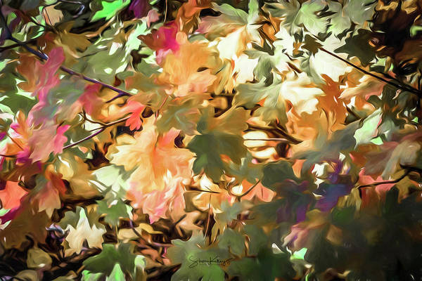 Digital Art - Autumn Leaves by Steve Kelley