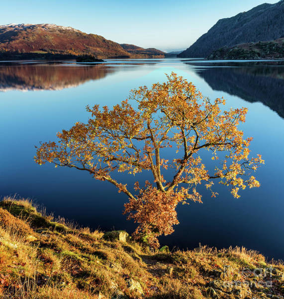 Glenridding Wall Art - Photograph - Autumn Light On Ullswater by Richard Burdon