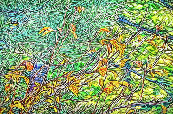 Digital Art - Autumn Light Perceptions by Joel Bruce Wallach