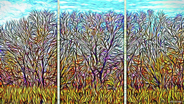 Digital Art - Autumn Light Windows - Triptych by Joel Bruce Wallach