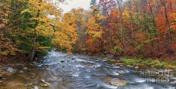Photograph - Autumn Magic by Rod Best