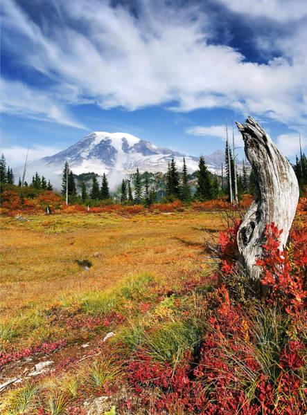 Mt Rainier Photograph - Autumn Majesty by Mike  Dawson