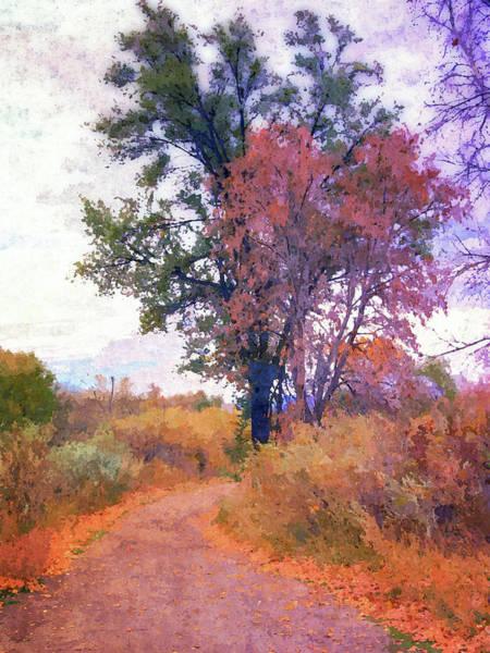 Digital Art - Autumn Melancholy by David King