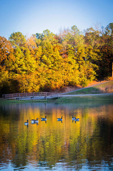 Photograph - Autumn Memories On The Pond by Parker Cunningham