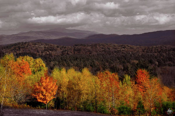 Photograph - Autumn Mindscape On Hebron Road by Wayne King