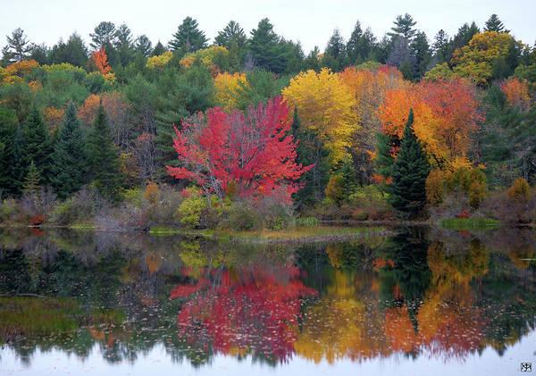 Photograph - Autumn Mirror by John Meader