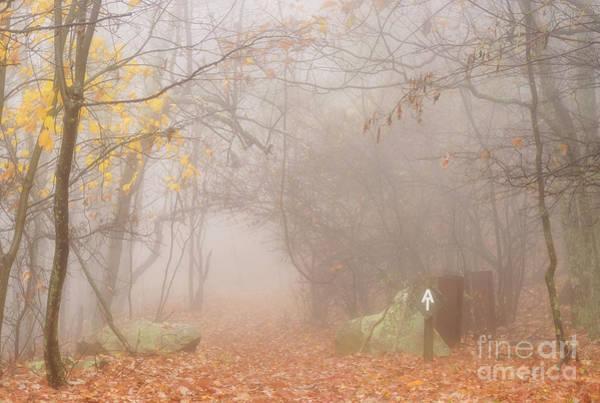 Photograph - Autumn Mist Appalachian Trail by Thomas R Fletcher