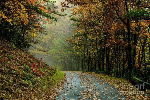 Photograph - Autumn Mist Blue Ridge Parkway by Thomas R Fletcher