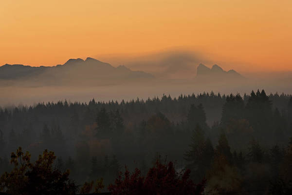 Photograph - Autumn Mist by David Lunde