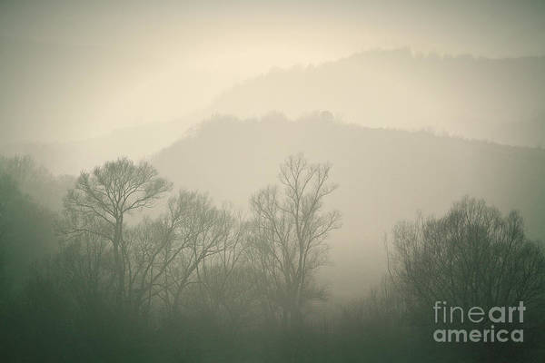 Photograph - Autumn Morning by Dimitar Hristov