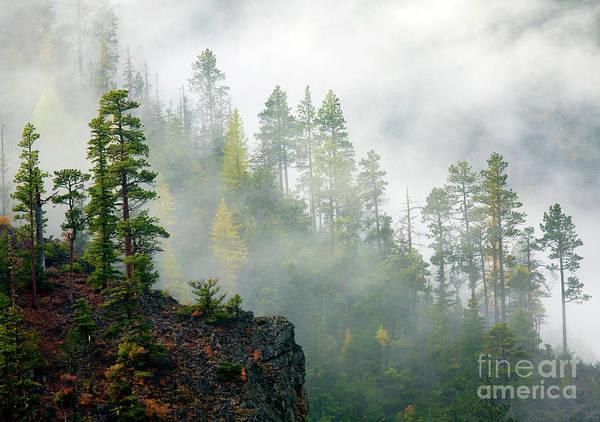 Wall Art - Photograph - Autumn Morning Fog by Mike Dawson